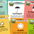 Fichas de actividades para el juego del paracaídas